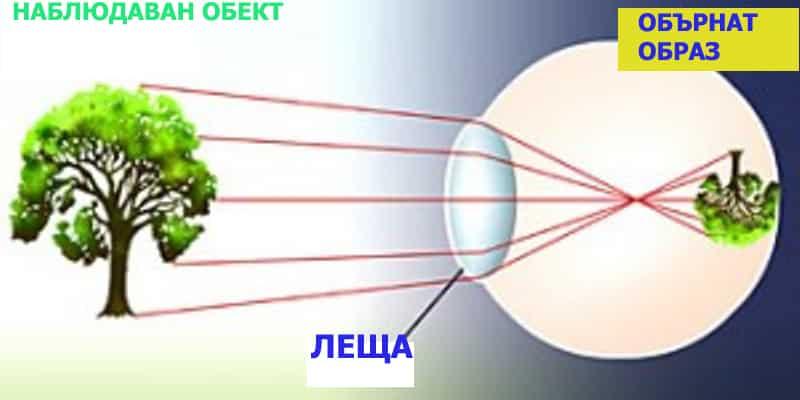 Проекция в окото - Плоската Земя - СТАМАТ