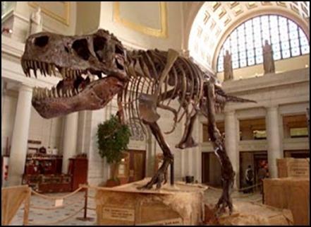 05.Измамата за динозаврите – динозаврите никога не са съществували - от Ерик Дубей – Плоската Земя - СТАМАТ