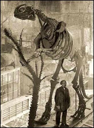 07.Измамата за динозаврите – динозаврите никога не са съществували - от Ерик Дубей – Плоската Земя - СТАМАТ