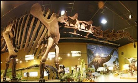 10.Измамата за динозаврите – динозаврите никога не са съществували - от Ерик Дубей – Плоската Земя - СТАМАТ