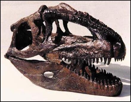 12.Измамата за динозаврите – динозаврите никога не са съществували - от Ерик Дубей – Плоската Земя - СТАМАТ