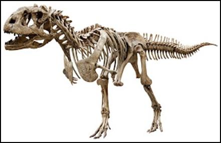 16.Измамата за динозаврите – динозаврите никога не са съществували - от Ерик Дубей – Плоската Земя - СТАМАТ