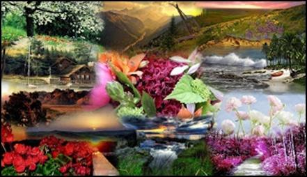 05.Еволюцията е лъжа – Разумният Замисъл е Истината - от Ерик Дубей – Плоската Земя - СТАМАТ