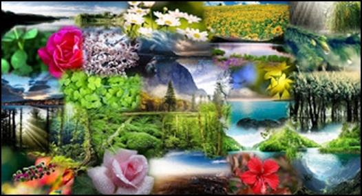 07.Еволюцията е лъжа – Разумният Замисъл е Истината - от Ерик Дубей – Плоската Земя - СТАМАТ