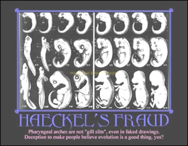 02.Маймуночовекът никога не е съществувал - от Ерик Дубей – Плоската Земя - СТАМАТ