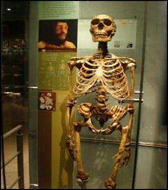 07.Маймуночовекът никога не е съществувал - от Ерик Дубей – Плоската Земя - СТАМАТ
