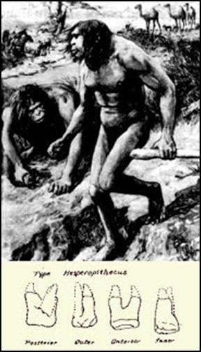 12.Маймуночовекът никога не е съществувал - от Ерик Дубей – Плоската Земя - СТАМАТ