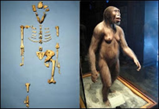 16.Маймуночовекът никога не е съществувал - от Ерик Дубей – Плоската Земя - СТАМАТ