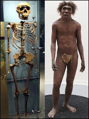 18.Маймуночовекът никога не е съществувал - от Ерик Дубей – Плоската Земя - СТАМАТ