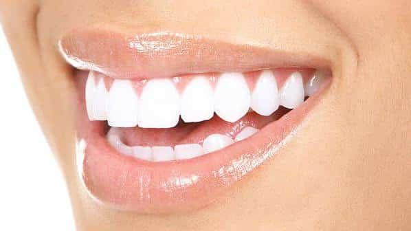 Нашите зъби приличат на зъбите на плодоядните животни - Плоската Земя - СТАМАТ