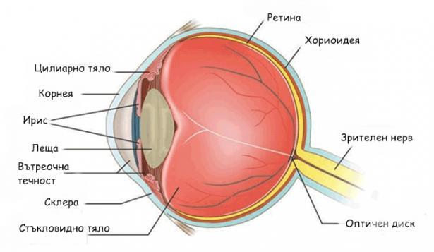 0407.Устройството на Човешкото око обяснява перспективата - Плоската Земя - СТАМАТ