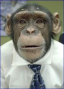 Eволюцията е лъжа - Плоската Земя - СТАМАТ