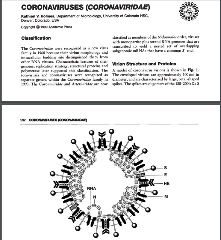 Encyclopedia-of-Virology---1999---Coronavirus