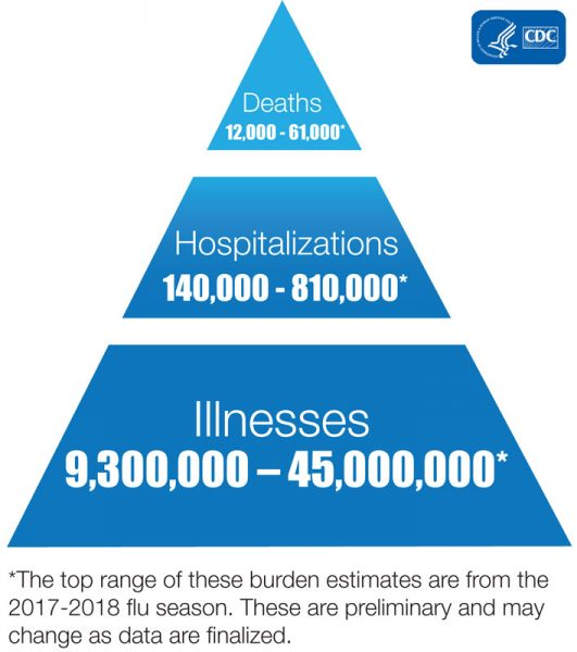 Influenza-Chart-Infographic-high-res-1